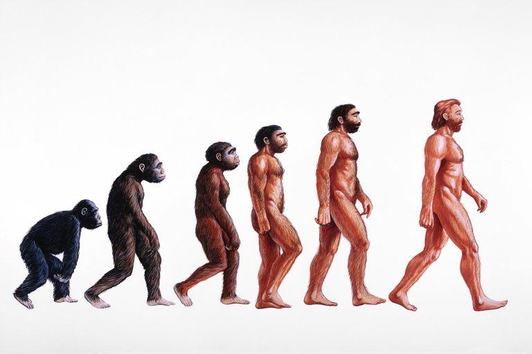 Darwin's biggest critics are evolutionary biologists
